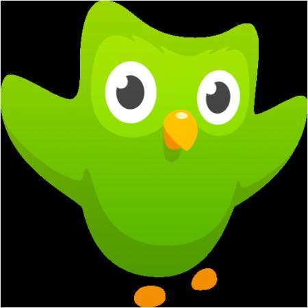 duolingo-app-logo