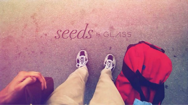 google_glass_seeds